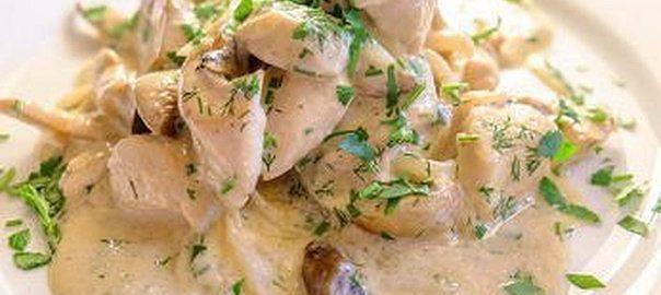 курица в белом соусе